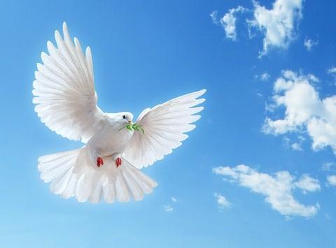 Berkata-kata dalam Bahasa Roh – III.   Adakah Kesemuanya Berkata-Kata Dalam Bahasa Roh?
