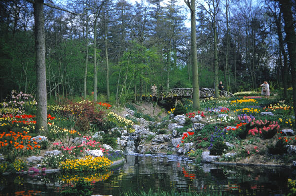 Kewajiban Dalam Taman Firdaus