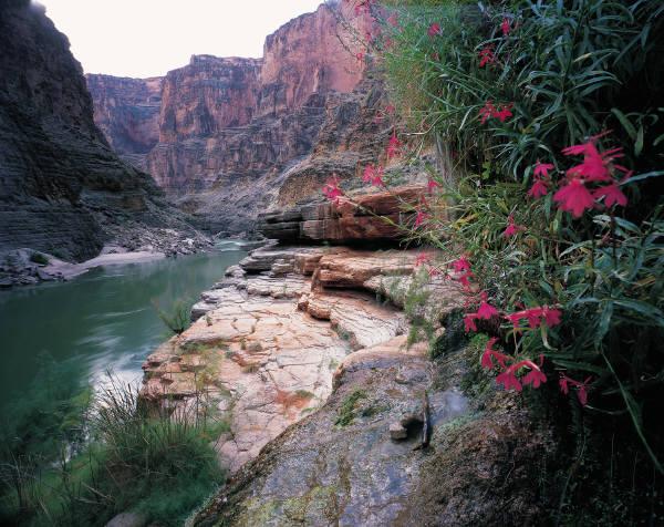 Huraian Singkat Dari Kitab Pengkhotbah:Pasal 10 – 12
